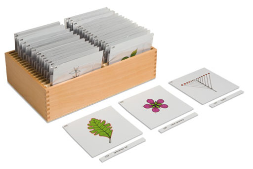 0.197.00Botany Cards complete set