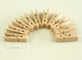 Pegs wooden x 10 PL0022