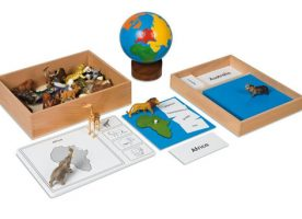 Nienhuis animal continent box